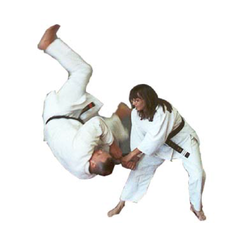 Changs Hapkido Academy Martial Arts 230 S Main St Lombard Il
