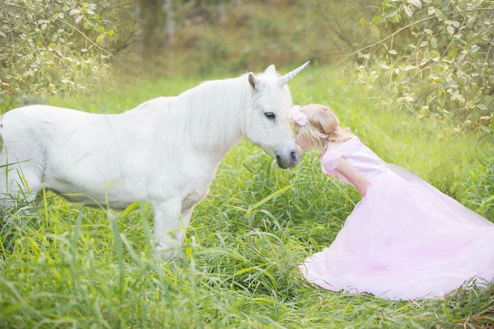Dreamland Ponies: Maple Valley, WA