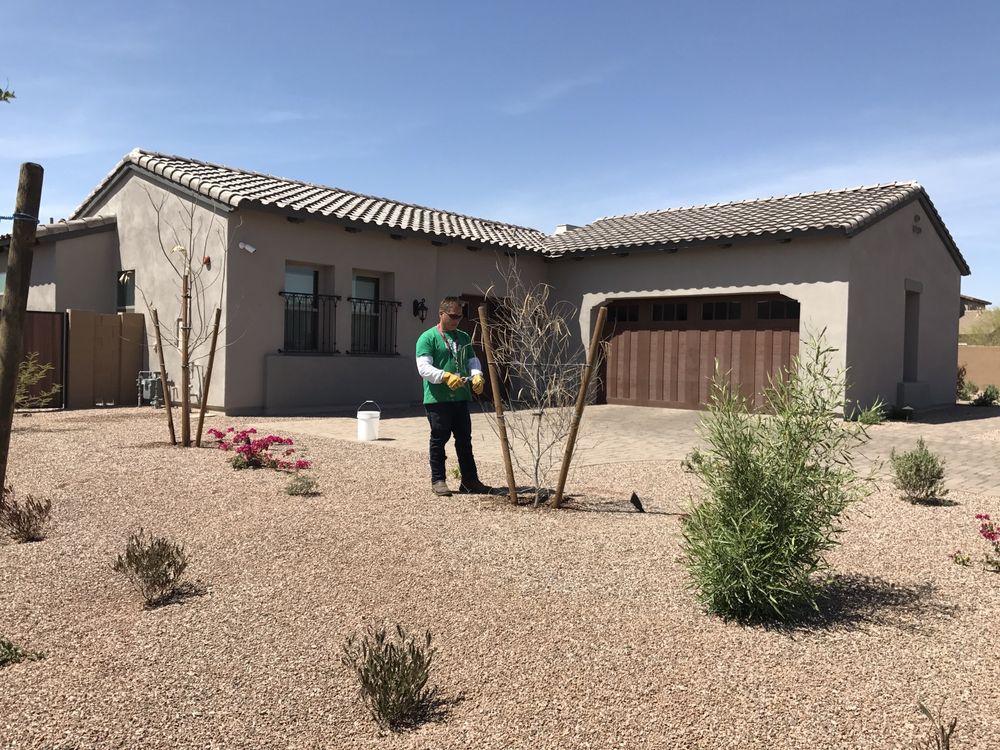 AZ Desert Tree Care