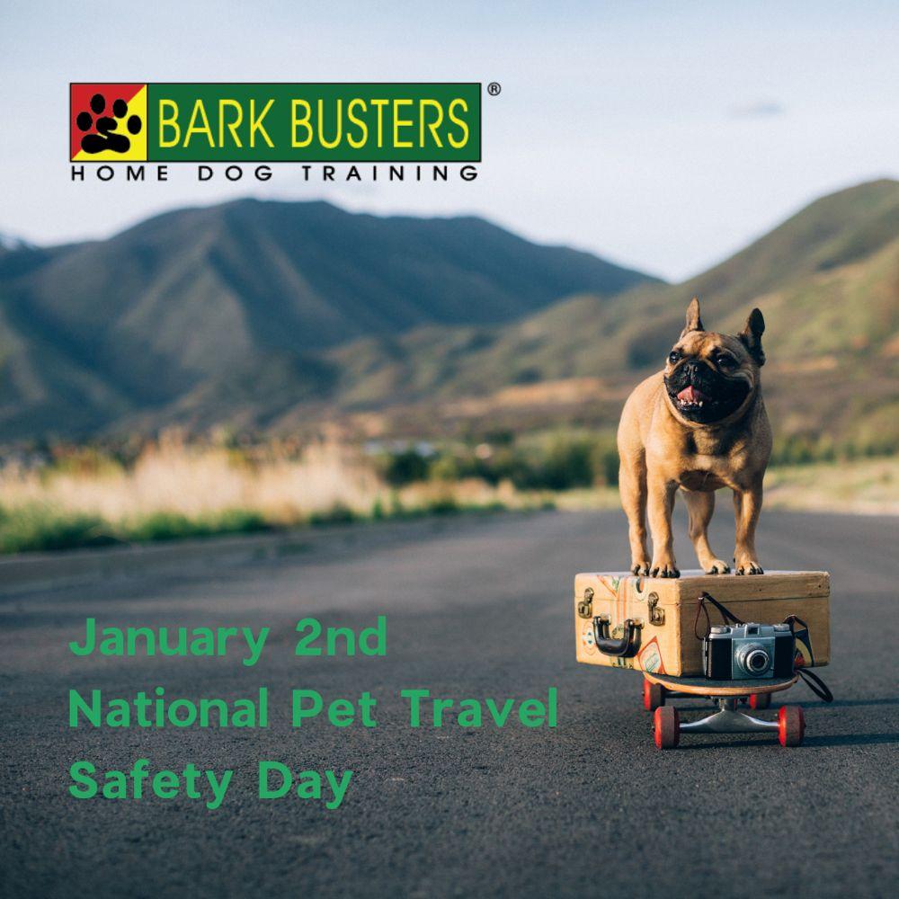 Bark Busters: 1070 Montgomery Rd, Altamonte Springs, FL