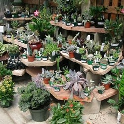Photo Of Campbell S Nurseries Garden Centers Lincoln Ne United States
