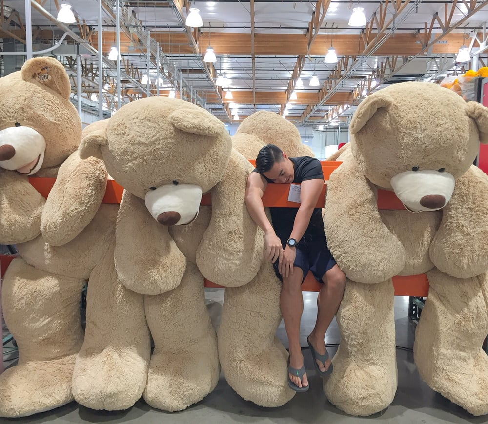 large teddy bears for sale 189 yelp. Black Bedroom Furniture Sets. Home Design Ideas