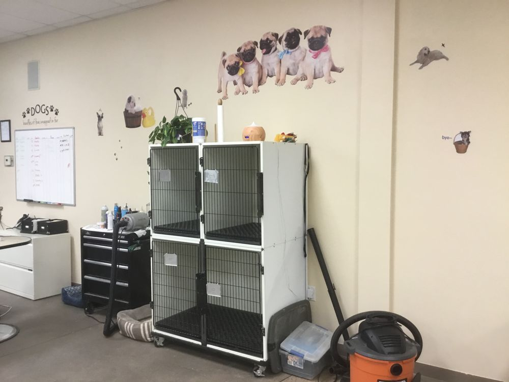 Bubbles N Bows Pet Grooming: 1200 Dexter St, Fort Lupton, CO