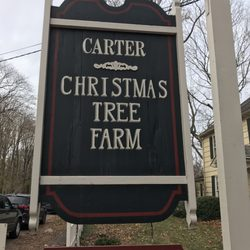 Millers Christmas Tree Farm.Carter Christmas Tree Farm 123 N Country Rd Miller Place