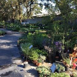 Photo Of California Flora Nursery Fulton Ca United States