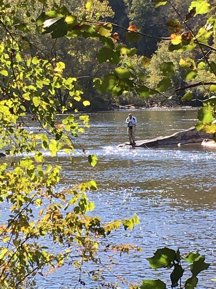 Walnut Island River Park: 3042 Old Marshall Hwy, Alexander, NC