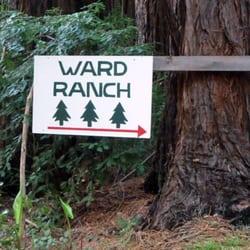 Ward Ranch Christmas Tree Farm - Christmas Trees - 4820 Bonny Doon ...
