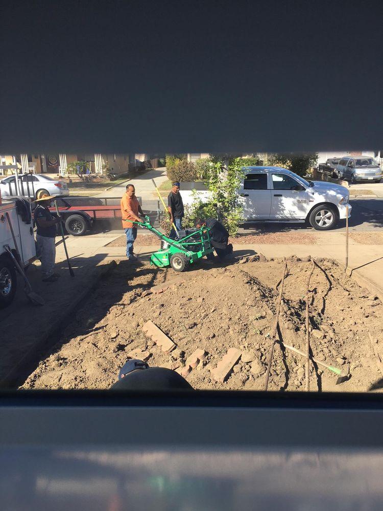 Coronado Tree Service And Landscaping