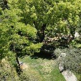 Jard bot nic de barcelona 92 fotos y 12 rese as for Jardin botanico numero telefonico