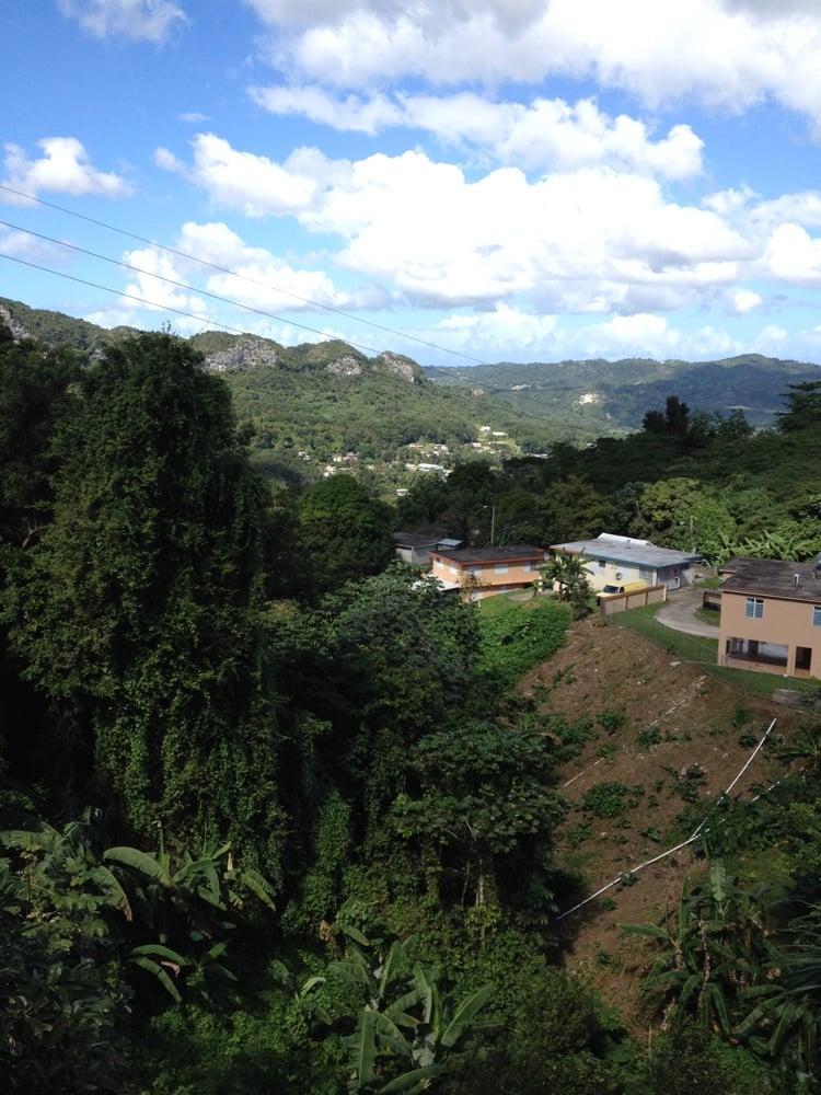 Pollos Neco: Puerto Rico 149, Ciales, PR