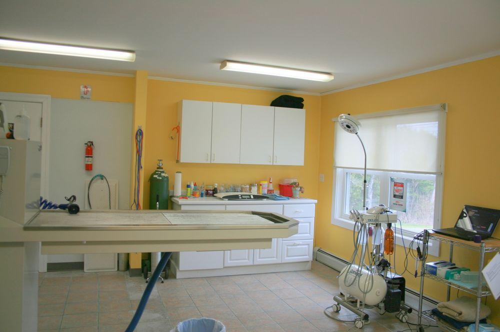Danville Animal Hospital: 549 Rt 2 E, Danville, VT