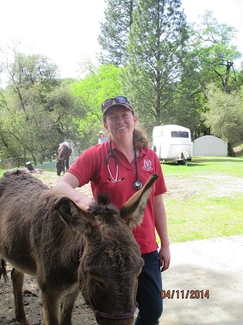 At the Farm Mobile Veterinary Service: 101 W McKnight Way, Grass Valley, CA