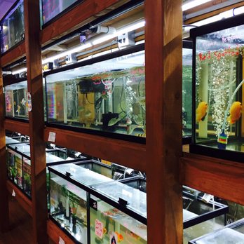 Pet zone tropical fish 306 photos 65 reviews local for Fish store san diego