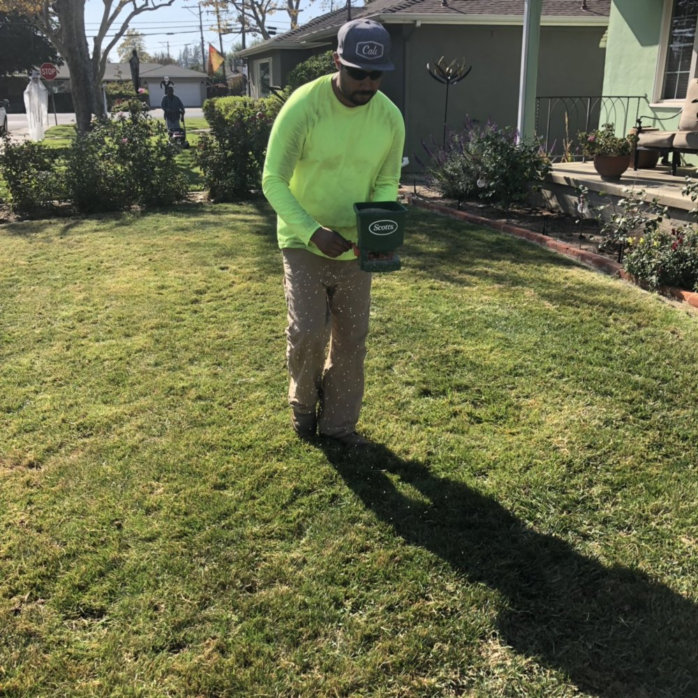 Photo of Eric's Landscaping - Woodland, CA, United States. Grass seeding - Grass Seeding - Yelp