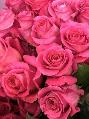 Danisas wholesale fresh flowers inc 8870 monard dr silver spring danisas wholesale fresh flowers inc 8870 monard dr silver spring md florists mapquest mightylinksfo