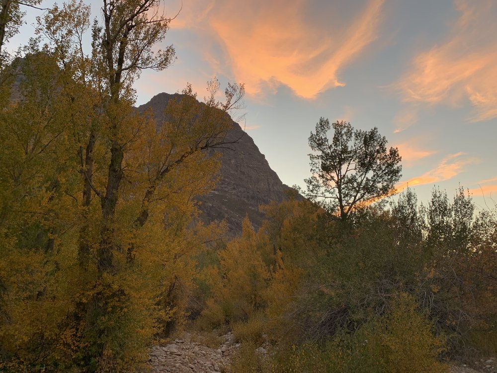 Thomas Canyon Campground: Thomas Canyon Campground, Spring Creek, NV