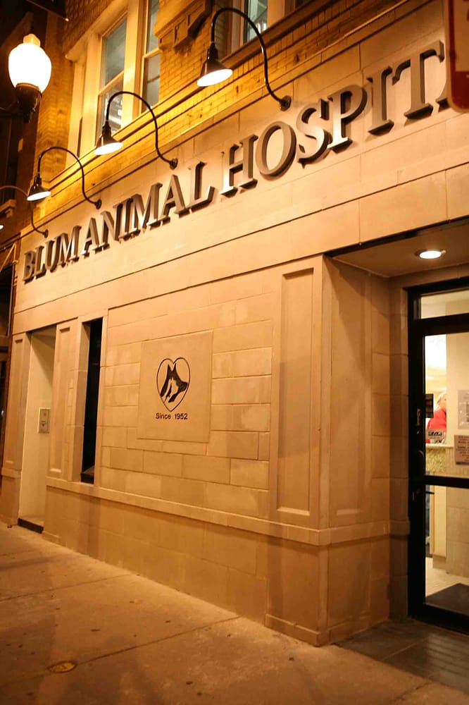 Blum Animal Hospital