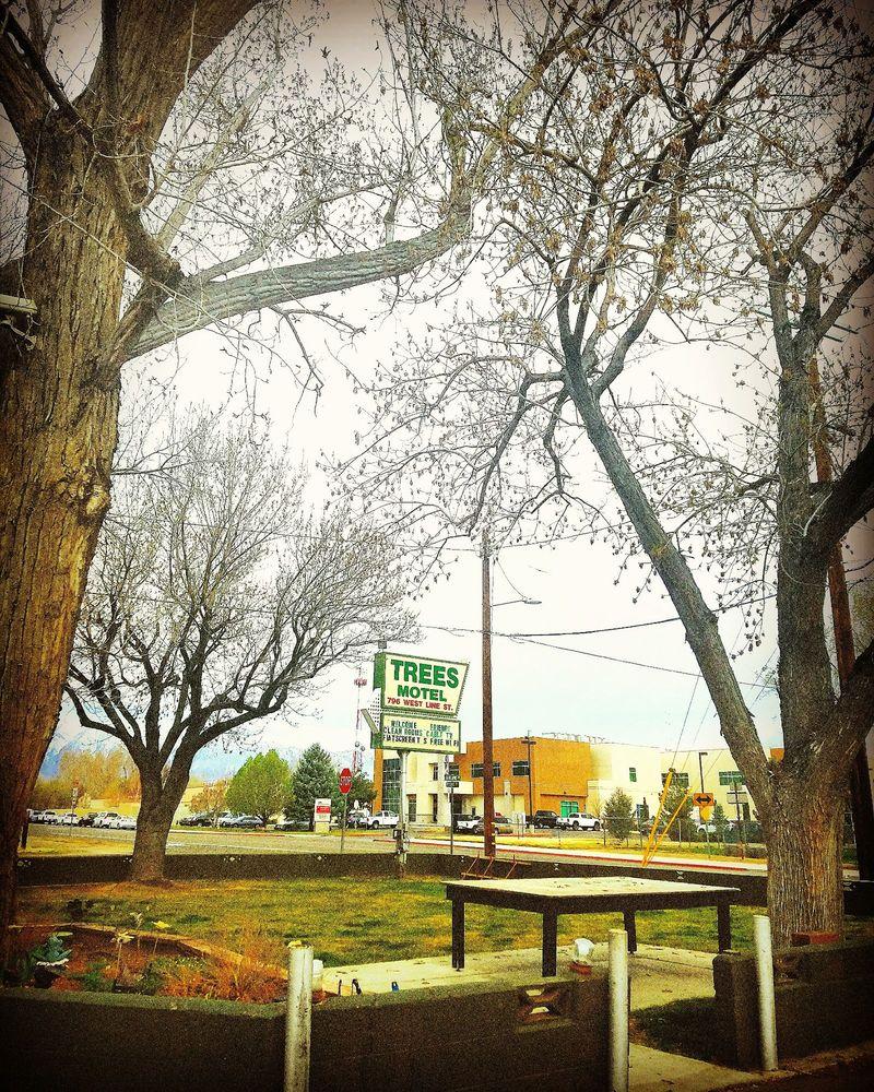 The Trees Motel: 796 W Line St, Bishop, CA