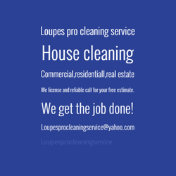 loupes pro cleaning service