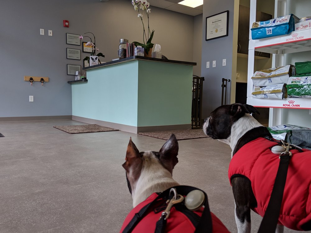 West Marin Pet Hospital: 767 Center Blvd, Fairfax, CA