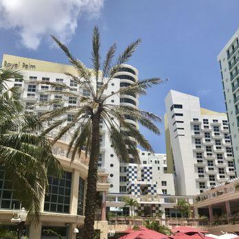 Royal Palm South Beach Miami A Tribute Portfolio Resort 383 Photos 265 Reviews Resorts 1545 Collins Ave Fl Phone Number Yelp