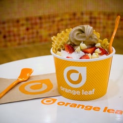 Orange leaf frozen yogurt closed do it yourself food 12908 n photo of orange leaf frozen yogurt tampa fl united states photo by solutioingenieria Choice Image