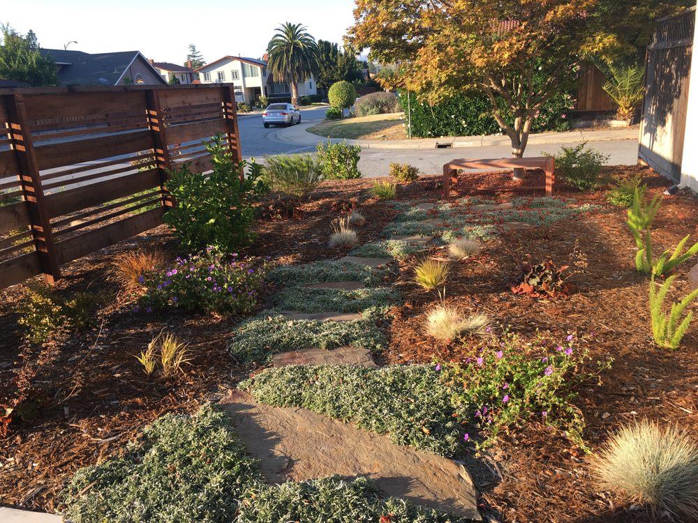 Patty Walters Landscape Design: Santa Cruz, CA