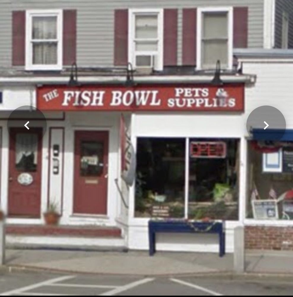 Fish Bowl: 31 Union Square, Milford, NH