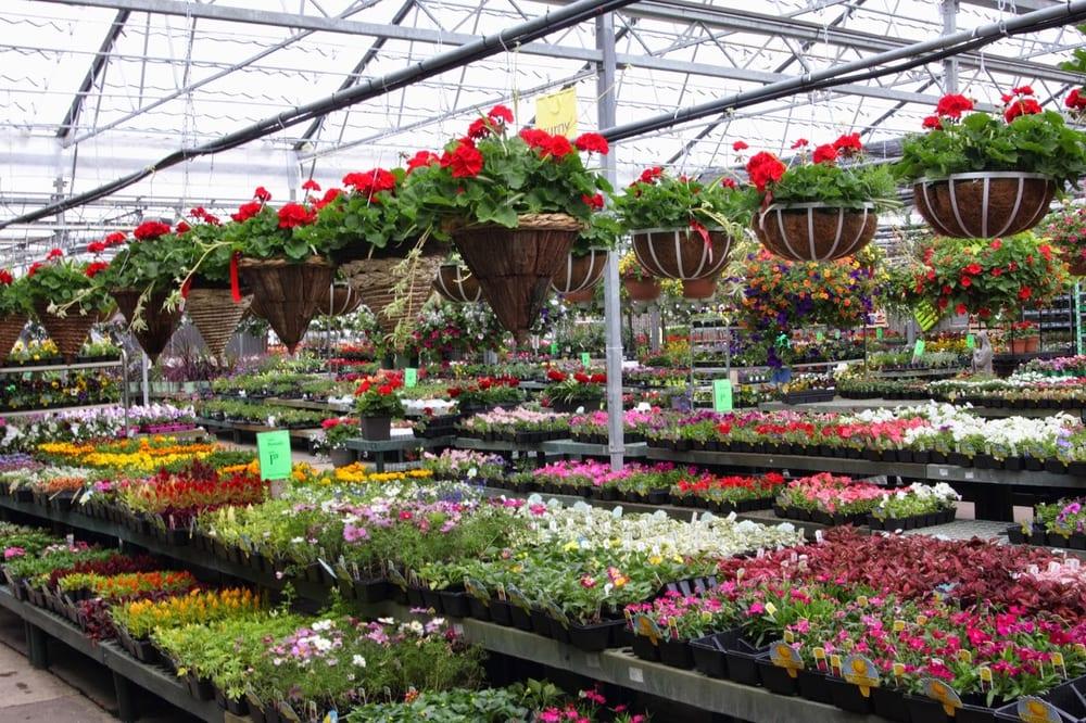 Prairie Gardens Greenhouse Yelp