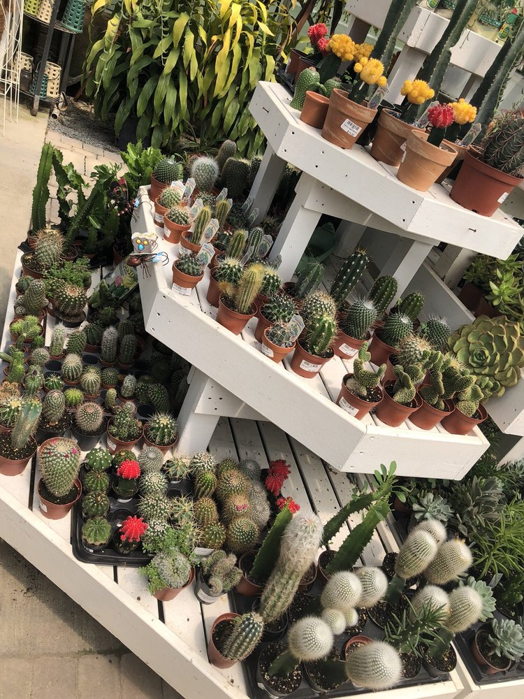 Chapon's Greenhouse & Supply