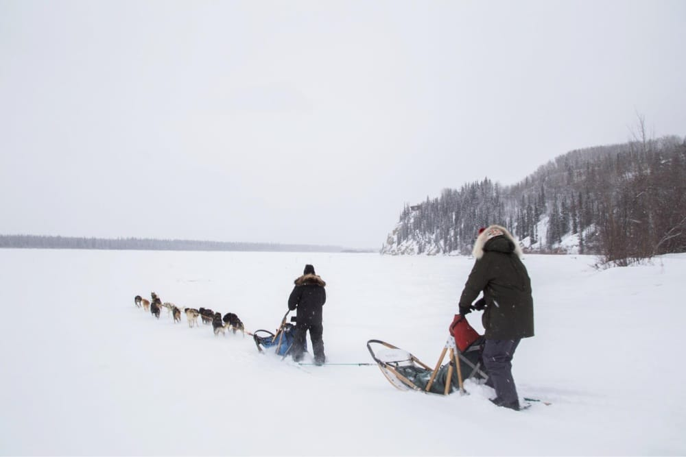Social Spots from Sled Dog Adventures