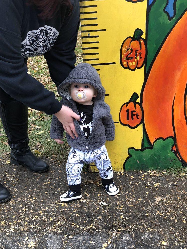 The Pumpkin Patch: 3178 IL Rte 173, Caledonia, IL