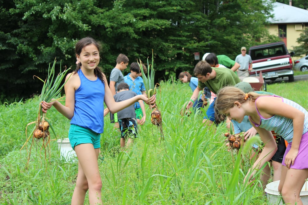 The Nature Place Day Camp: 285 Hungry Hollow Rd, Chestnut Ridge, NY