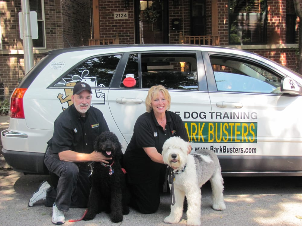 Forest City Dog Training Reviews