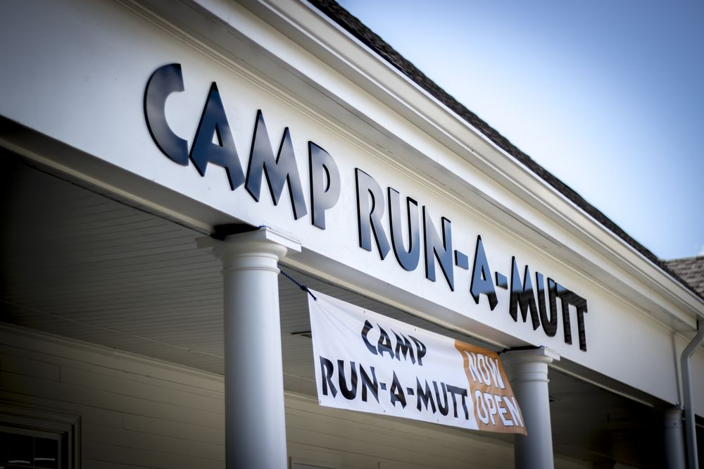 Camp Run-A-Mutt Dunwoody