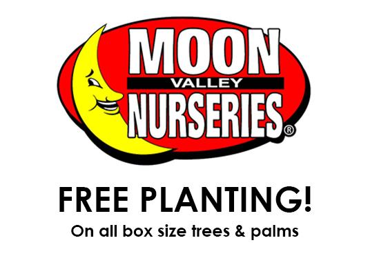 Moon Valley Nurseries: 14620 I-35, Buda, TX