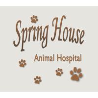 Spring House Animal Hospital: 617 N Bethlehem Pike, Ambler, PA