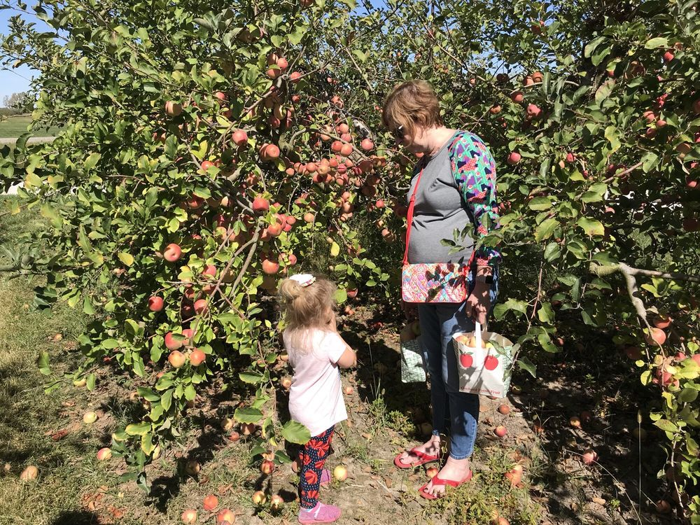 Mills Apple Farm: 11477 Pocahontas Rd, Marine, IL