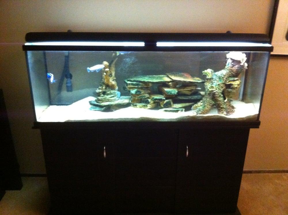 Blue Lagoon Aquarium 33 Foton 34 Recensioner