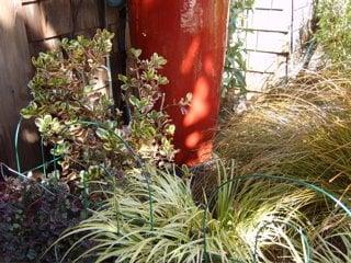 Cheryl Hawkins Landscaping