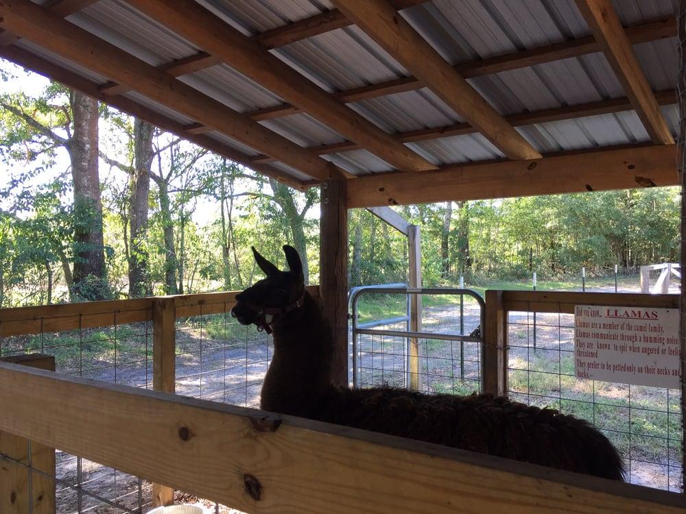 Holiday Farms: 10884 Grays Hwy, Ridgeland, SC