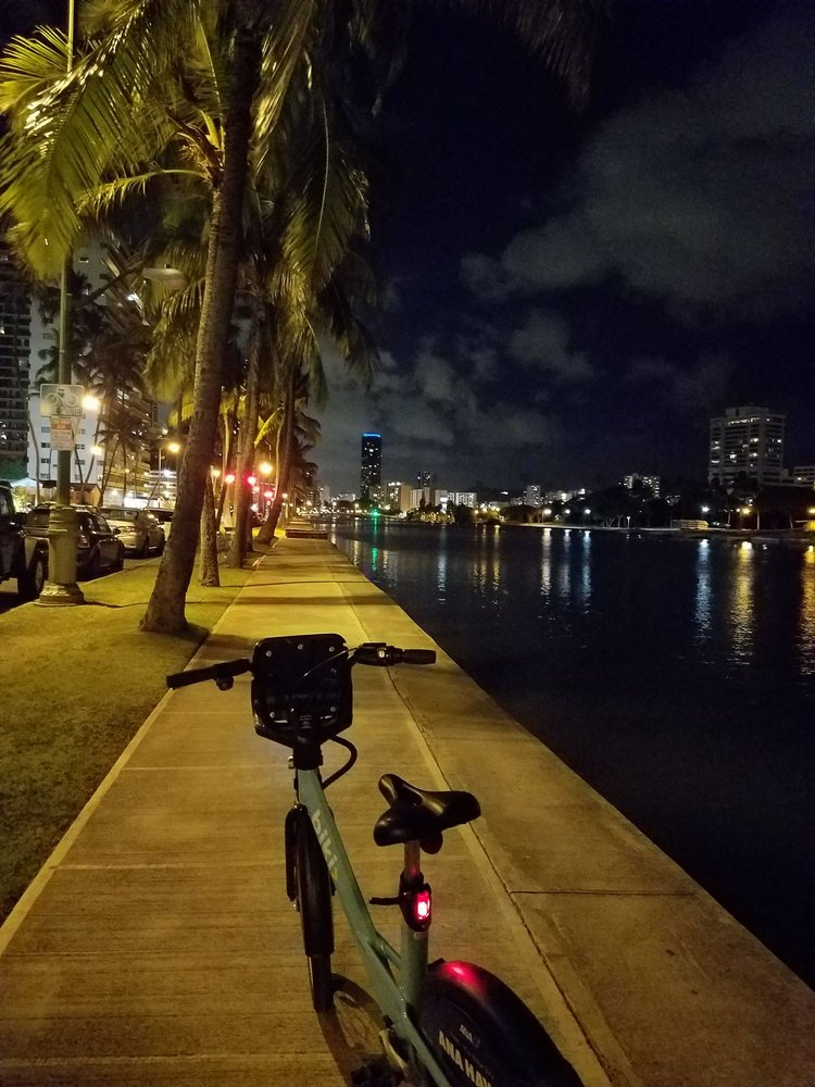 18361cb690 Biki - 178 Photos   112 Reviews - Bike Rentals - Waikiki
