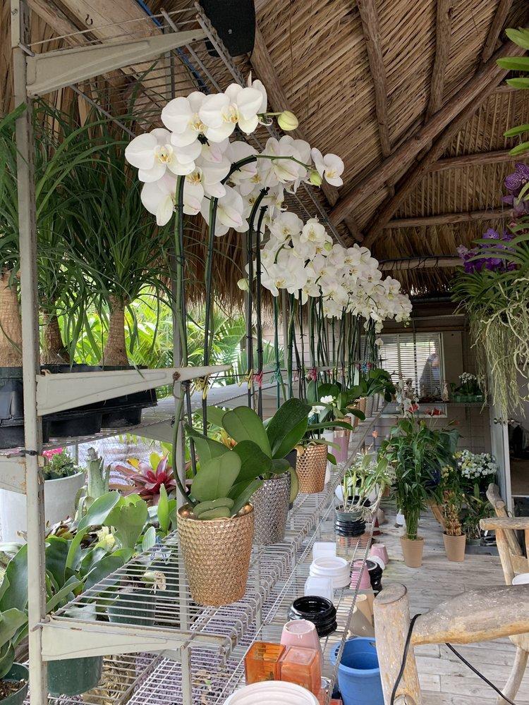 Margarita's Gardens: 7007 SW 120th Ave, Miami, FL