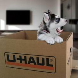 Photo Of Storage Plus Boston   Waltham, MA, United States. Moving Supplies  Too