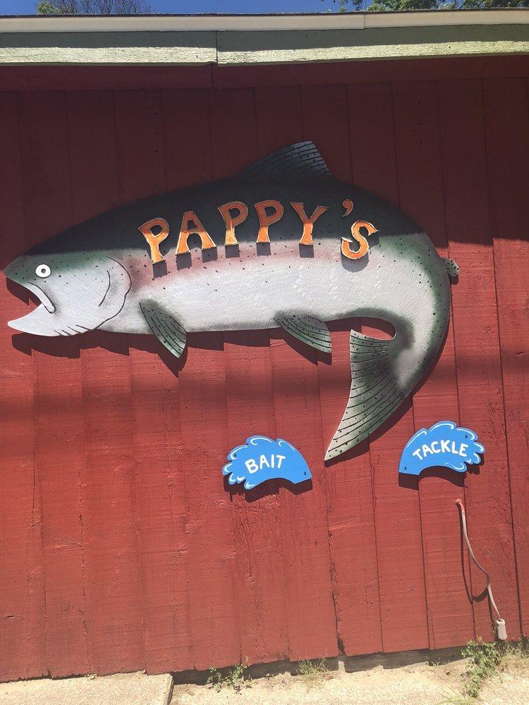 Pappy's Bait & Tackle: 17092 Caberfae Hwy, Wellston, MI