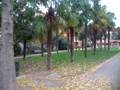 Jardin public d embarthe park gr nanlage rue d for O jardin gourmand toulouse