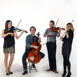 Elegance String Quartet - 16 Photos - Musicians - 2515 S Colorado St