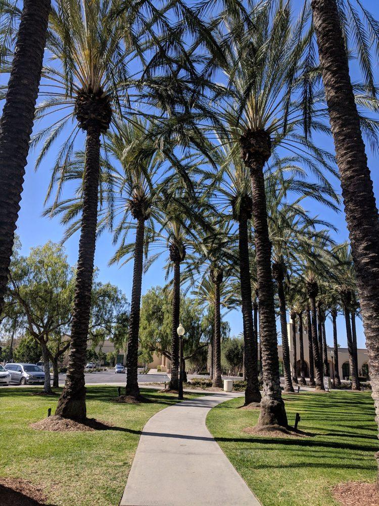 Rancho Santa Margarita Central Park 63