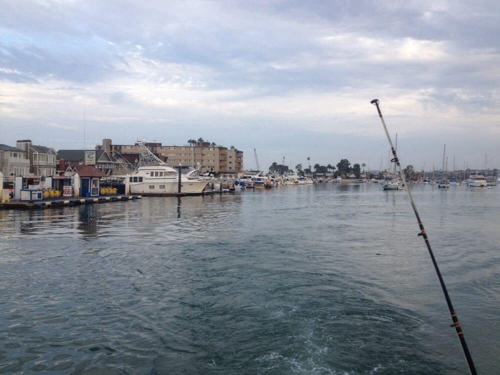Deep sea fishing trip yelp for Deep sea fishing newport