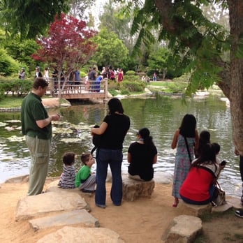 Earl Burns Miller Japanese Garden 878 Photos 212 Reviews Venues Event Spaces 1250